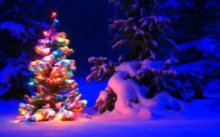 CANAVESE - Tutte le feste di Natale minuto per minuto