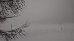 CANAVESE SOTTO LA NEVE - I fiocchi bianchi hanno iniziato a cadere copiosi anche in pianura - FOTO - immagine 12
