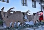 NOASCA - «Bandite» le renne, Babbo Natale arriva con gli stambecchi - immagine 2