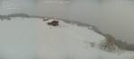 CANAVESE SOTTO LA NEVE - I fiocchi bianchi hanno iniziato a cadere copiosi anche in pianura - FOTO - immagine 4