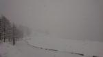 CANAVESE SOTTO LA NEVE - I fiocchi bianchi hanno iniziato a cadere copiosi anche in pianura - FOTO - immagine 18