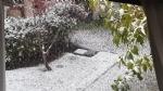 CANAVESE SOTTO LA NEVE - I fiocchi bianchi hanno iniziato a cadere copiosi anche in pianura - FOTO - immagine 11