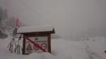 CANAVESE SOTTO LA NEVE - I fiocchi bianchi hanno iniziato a cadere copiosi anche in pianura - FOTO - immagine 15