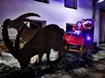 NOASCA - «Bandite» le renne, Babbo Natale arriva con gli stambecchi - immagine 4