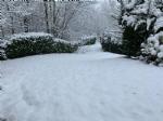 CANAVESE SOTTO LA NEVE - I fiocchi bianchi hanno iniziato a cadere copiosi anche in pianura - FOTO - immagine 25