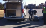 TRAGEDIA A RIBORDONE - Un uomo di Pont Canavese muore precipitando nella scarpata con lauto - FOTO e VIDEO - immagine 3