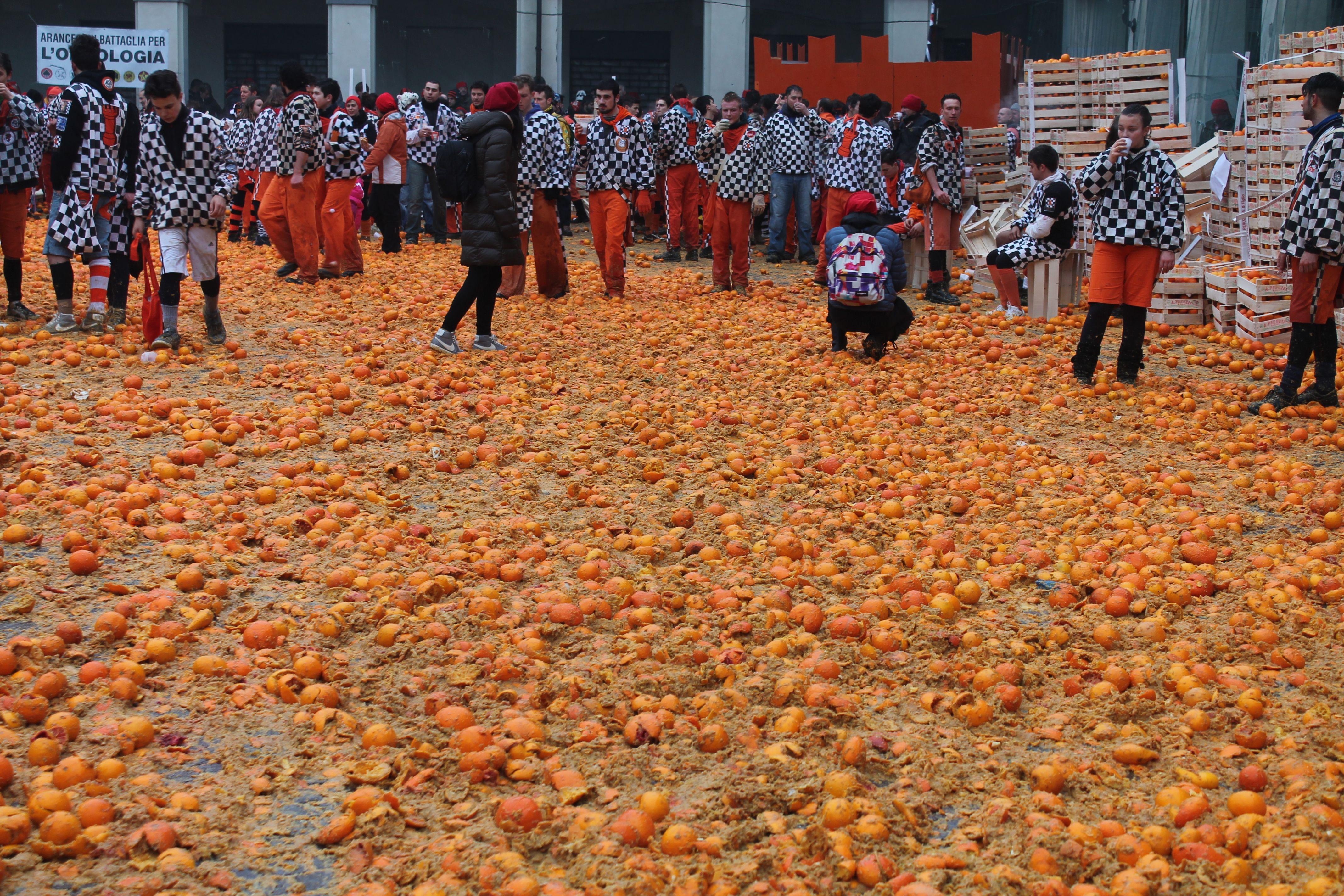IVREA - Le arance del Carnevale diventano concimi: quando lo «spreco» genera risorse