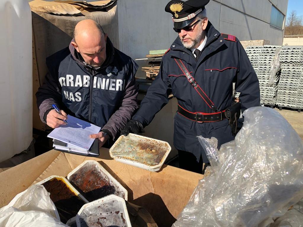 VEROLENGO - Cibo scaduto e pieno di parassiti trovato dai carabinieri - VIDEO