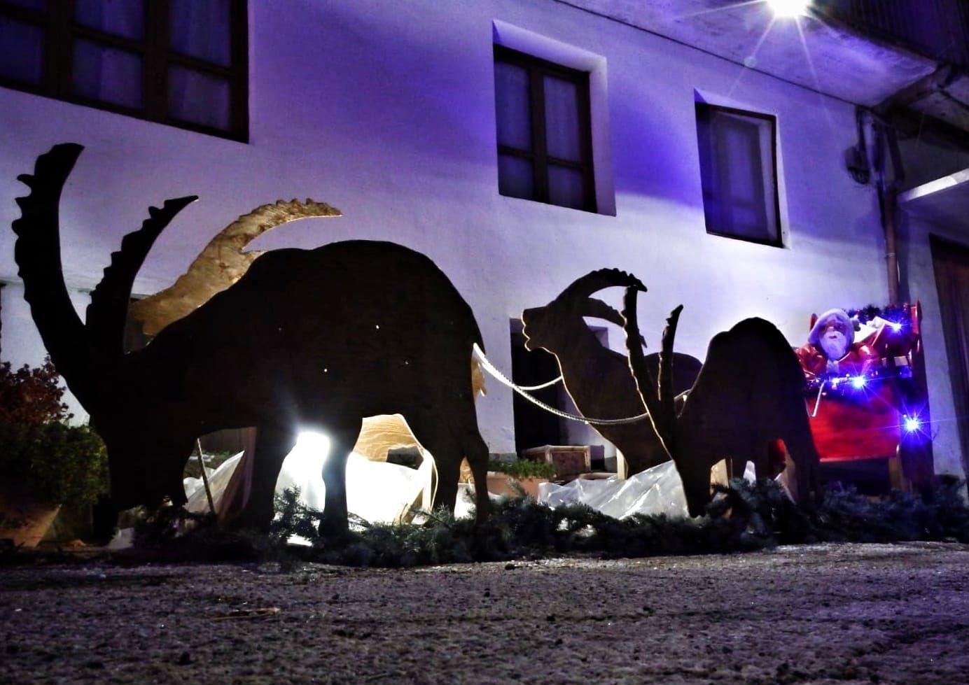 NOASCA - «Bandite» le renne, Babbo Natale arriva con gli stambecchi