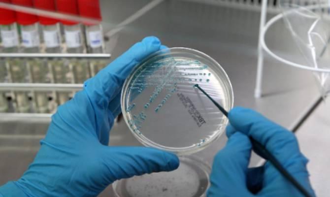 STRAMBINO - Tubercolosi a scuola: controlli estesi anche alle medie