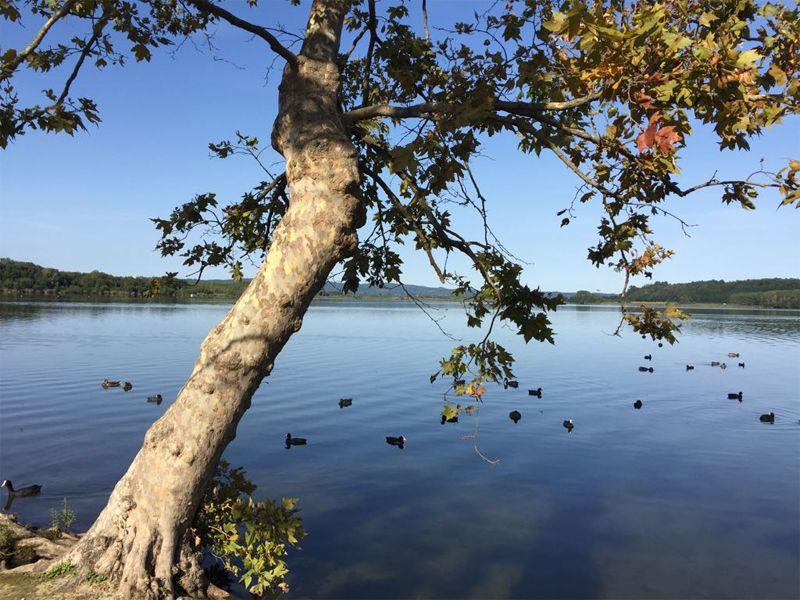 CANDIA CANAVESE - Il Parco provinciale del Lago compie 25 anni: è nato il primo marzo del 1995