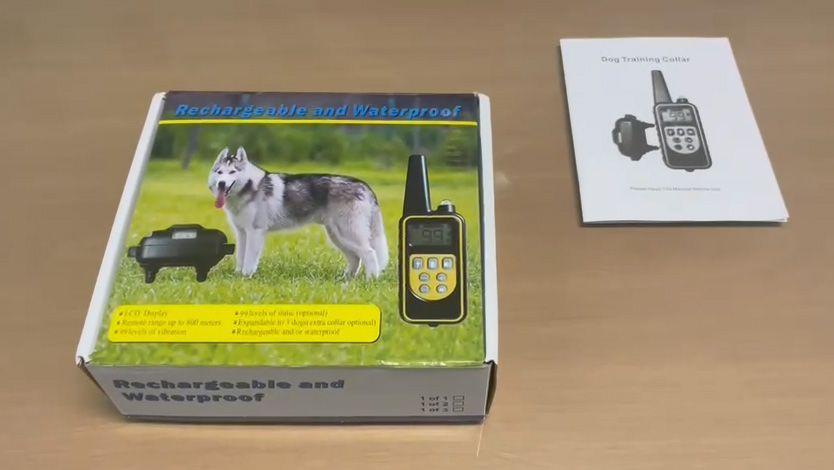 MAPPANO - Scosse elettriche al cane per addestrarlo: 45enne denunciato dai carabinieri di Leini