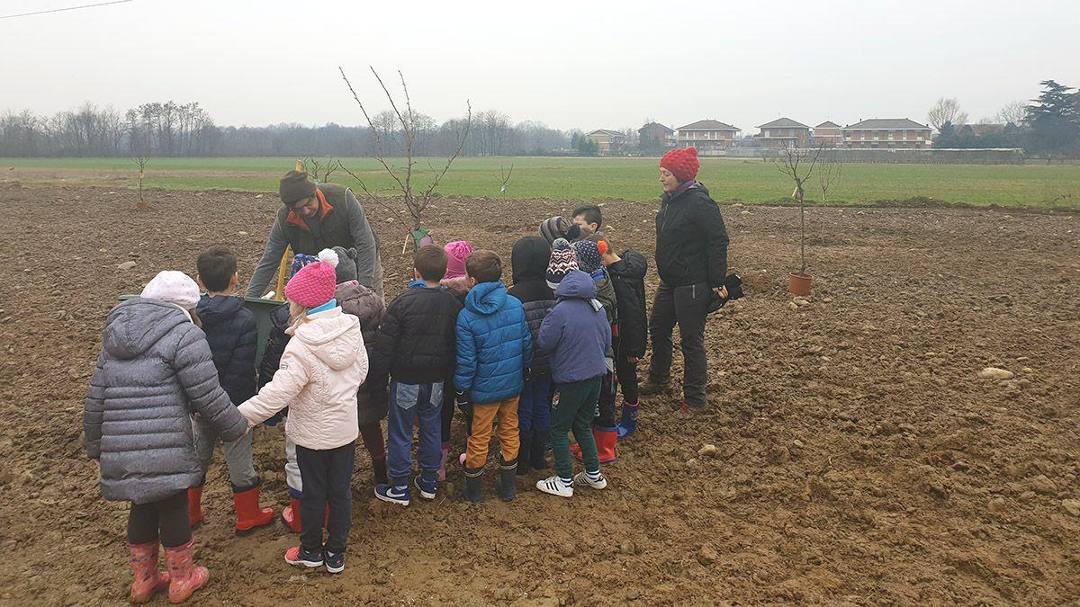 VOLPIANO - Nasce il frutteto comunitario: lo curerà tutta la città