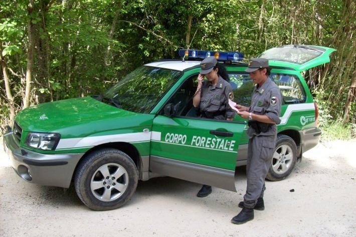 SICUREZZA - 32 denunciati per incendi boschivi in Piemonte dai carabinieri forestali