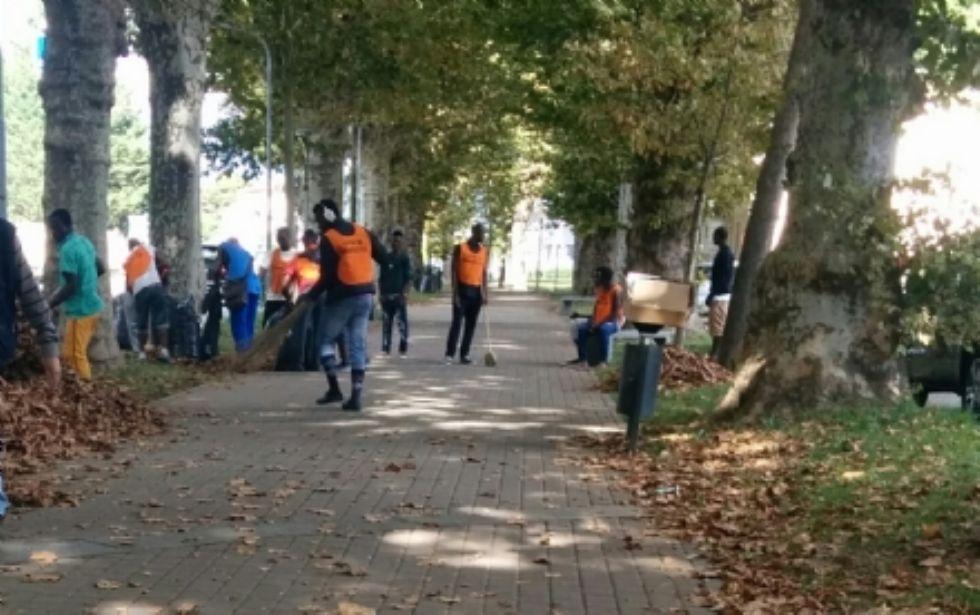 RIVAROLO - Profughi al lavoro per togliere le foglie dal viale - FOTO