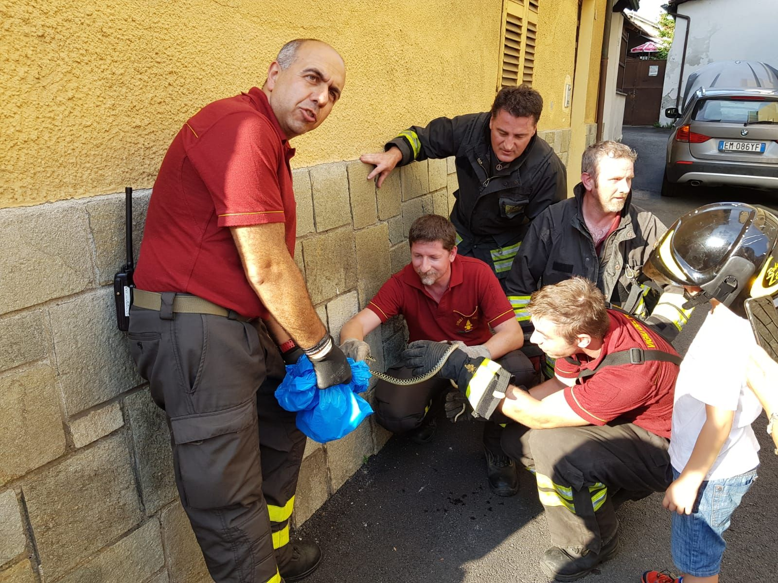 FAVRIA - Un serpente sbuca dal motore dell'auto: recuperato dai vigili del fuoco - FOTO e VIDEO