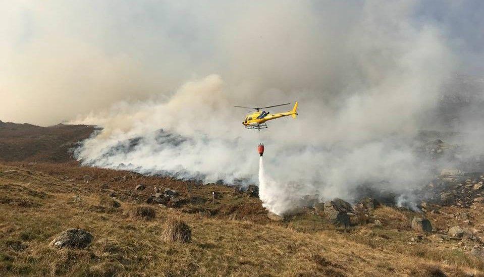 CANAVESE - Gli animali più forti degli incendi: nessuna carcassa ritrovata in Valle Orco