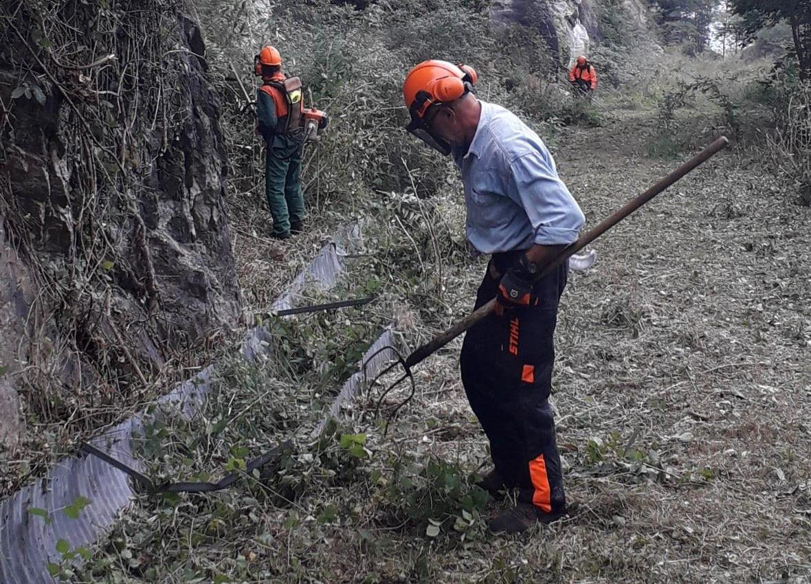 CANAVESE - Valchiusella e Dora Baltea: il lavoro degli operai forestali