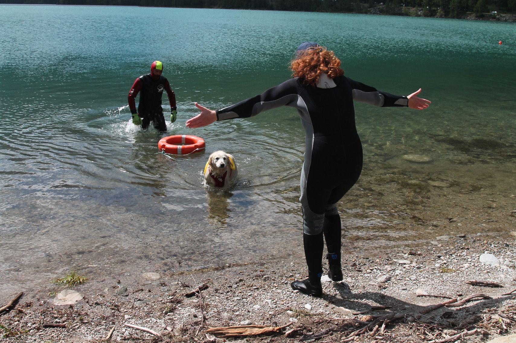 CERESOLE REALE - Cani da salvataggio nelle acque del lago - FOTO e VIDEO
