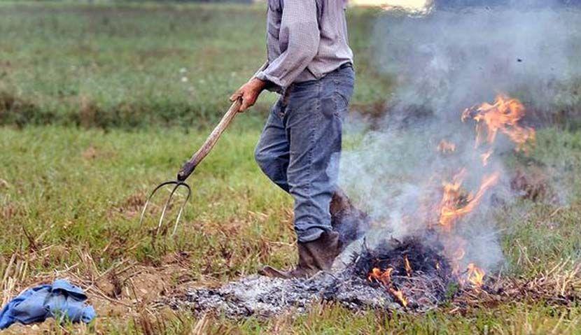 CANAVESE - Sulla legge abbruciamenti agricoli Legambiente dice No