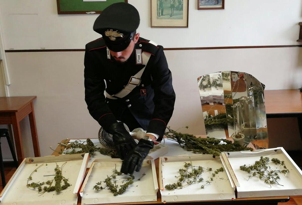 RUEGLIO - Laboratorio per la droga in casa: 41enne denunciato per produzione di stupefacenti - FOTO e VIDEO