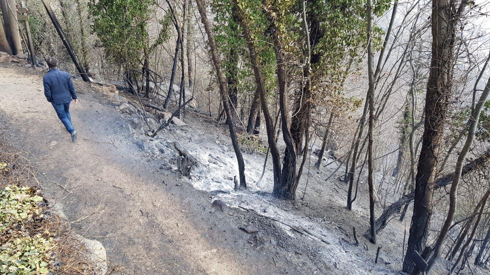 DISASTRO A BELMONTE - L'incendio ha devastato la riserva naturale del Sacro Monte - FOTO e VIDEO