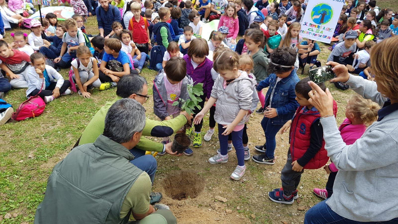 BELMONTE - «Fridays for Future»: i bimbi delle scuole piantano nuovi alberi nel bosco distrutto dagli incendi dolosi - FOTO e VIDEO