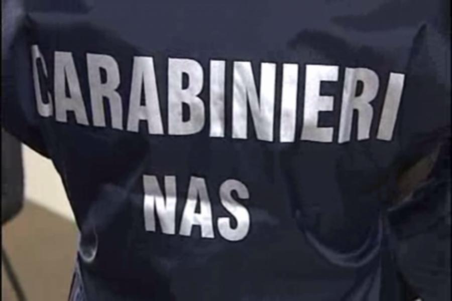 CASTELLAMONTE - Macelleria abusiva: la selvaggina dei bracconieri stipata in un capannone alle porte della città