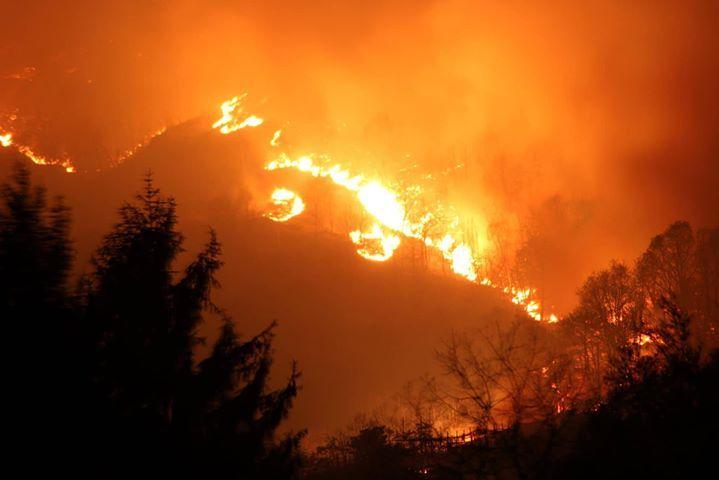 INCENDIO BELMONTE - 400 ettari devastati dalla furia delle fiamme