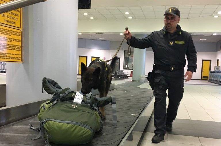 CASELLE - Creme sbiancanti cancerogene: la guardia di finanza ferma un passeggero nigeriano in aeroporto