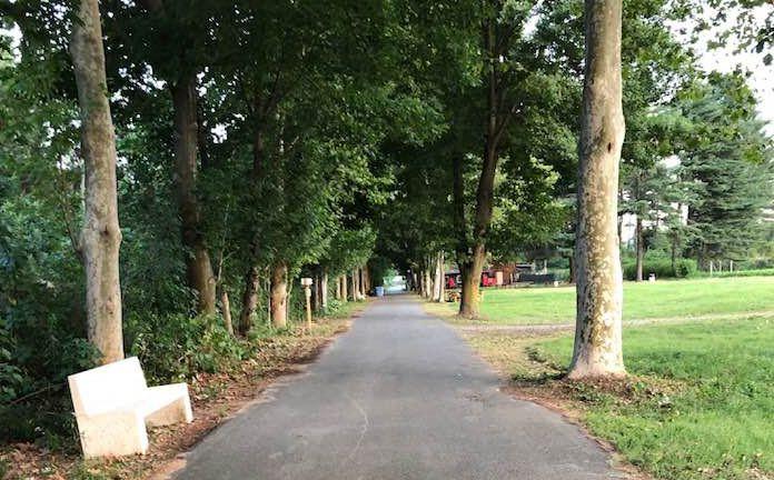 BORGARO - Il parco devastato dal nubifragio: i volontari lo riparano