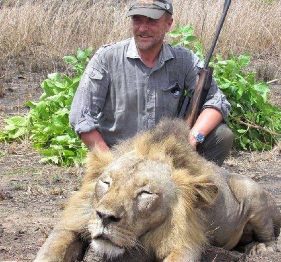 CANAVESE - Veterinario uccide un leone: l'ira degli animalisti