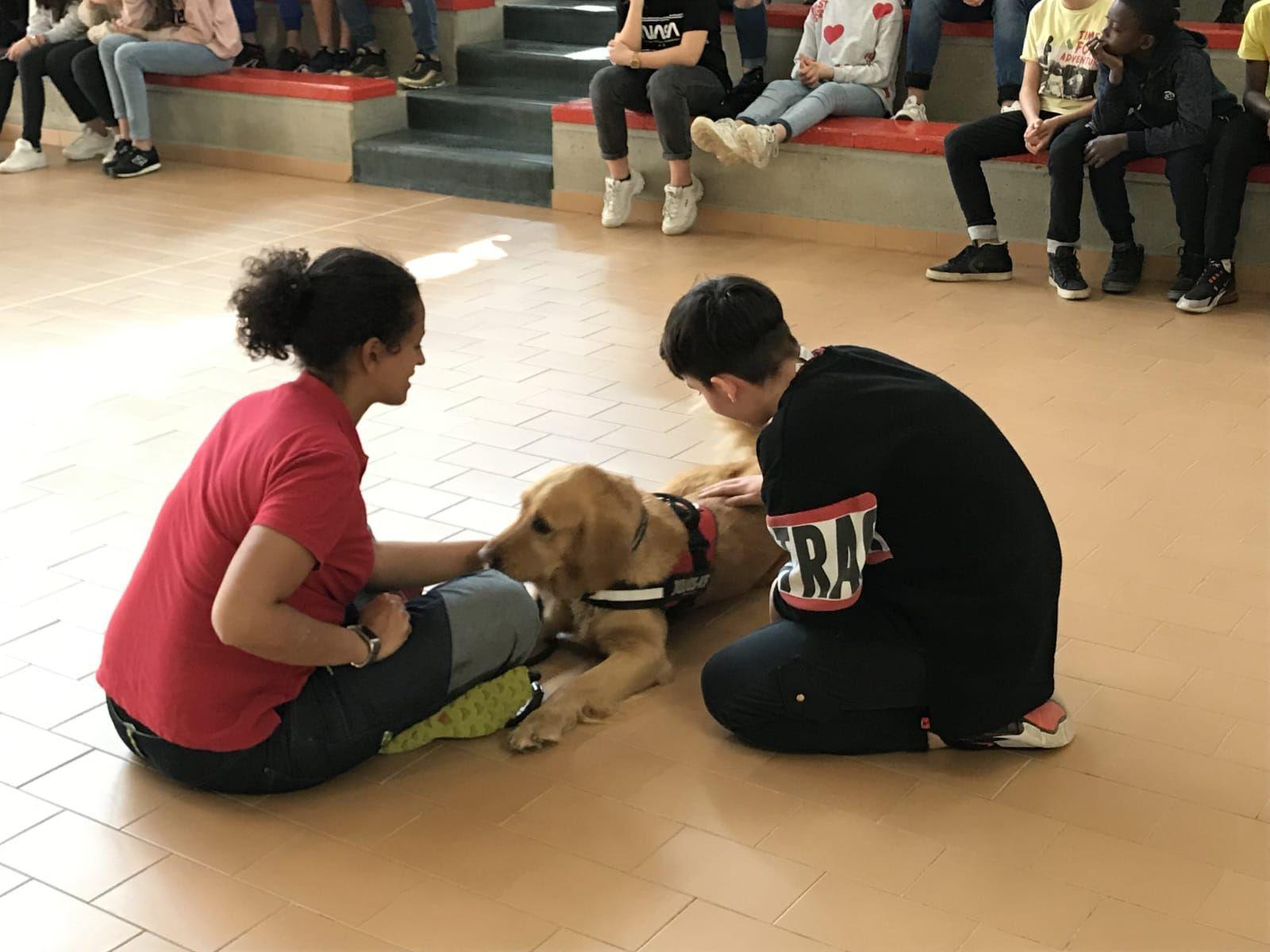 FORNO - Lezione di Pet Therapy nella giornata mondiale dell'autismo