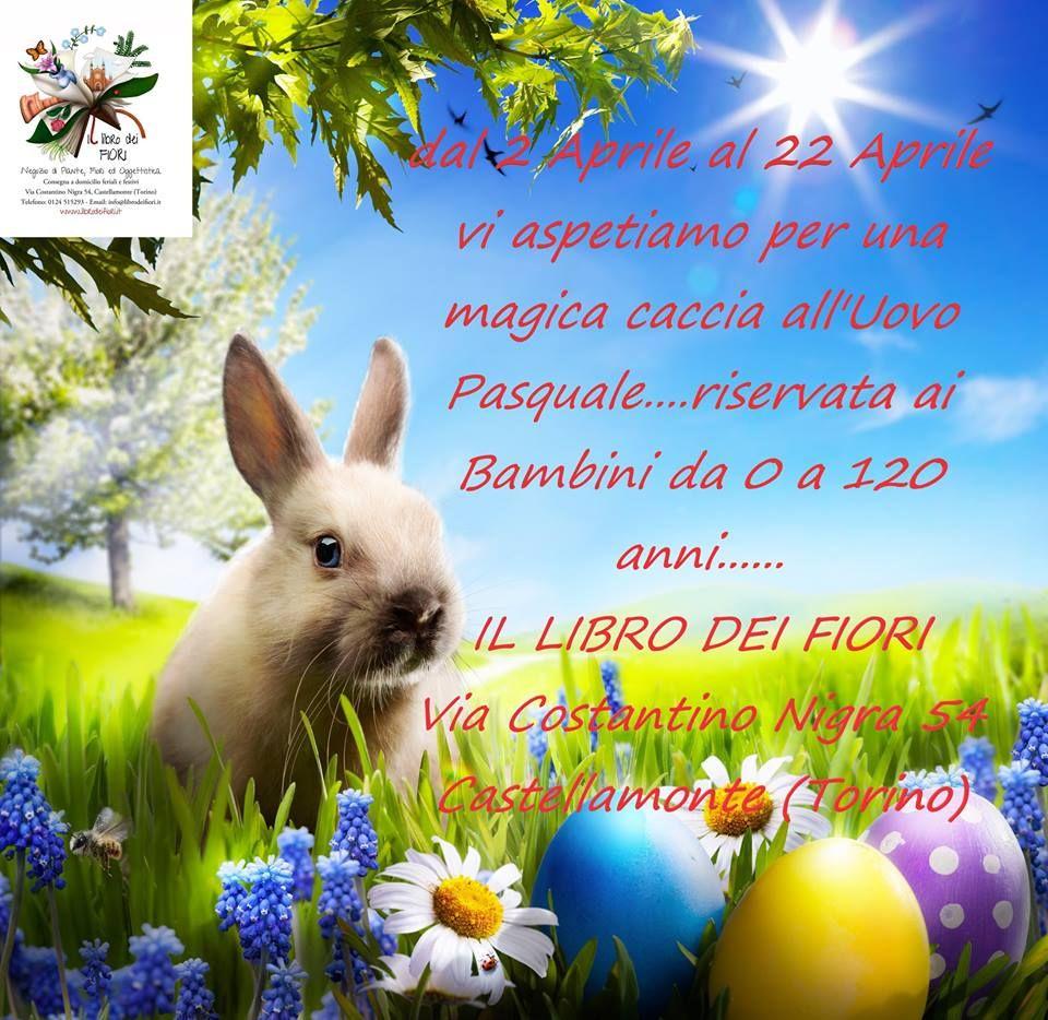 CASTELLAMONTE - Si è aperta la «Caccia all'uovo Pasquale» al Libro dei Fiori - FOTO