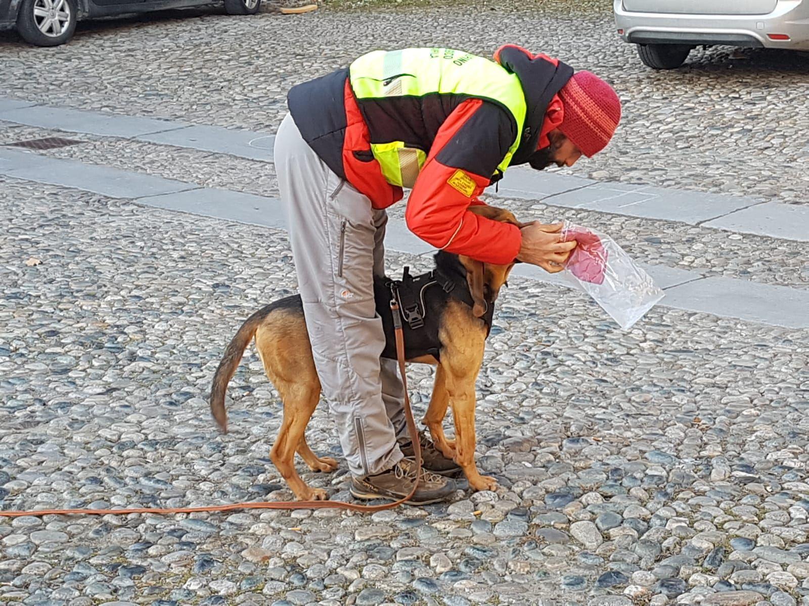 MONTALTO DORA - Unità cinofile del soccorso alpino in esercitazione