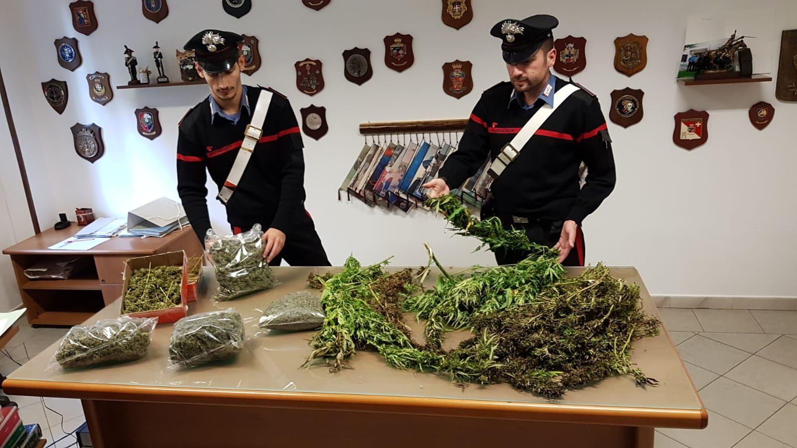 LEINI - Operazione antidroga: recuperati 17 chili di marijuana