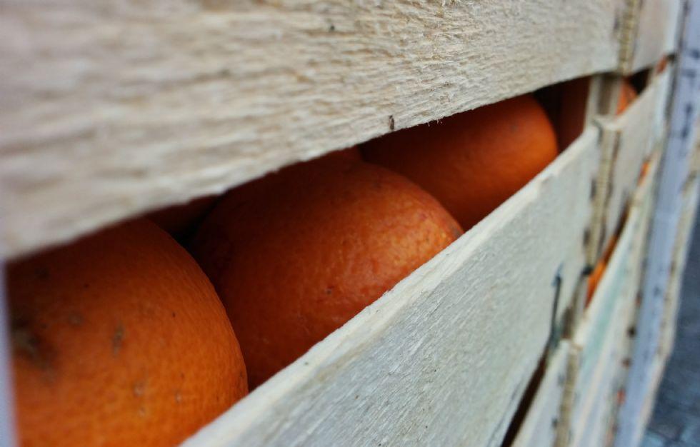 CARNEVALE DI IVREA - E' domenica, il giorno della prima battaglia delle arance